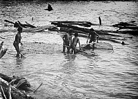 0094593 © Granger - Historical Picture ArchiveNEW GUINEA: WOMEN FISHING.   Papuan women fishing with large nets. Still from the documentary film 'The Sky Above - the Mud Below,' 1961.
