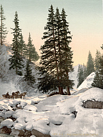 0127323 © Granger - Historical Picture ArchiveSWITZERLAND: DAVOS, c1895.   Winter landscape in Davos, Grison, Switzerland. Photochrome, c1895.
