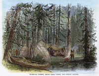 0042783 © Granger - Historical Picture ArchiveCANADA: FOREST.   Native American village in a Canadian forest. Wood engraving, 19th century.