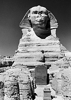0116138 © Granger - Historical Picture ArchiveEGYPT: GREAT SPHINX.   Frontal view of the Great Sphinx at Giza with the dream stele of King Thutmose IV between its paws. Photograph, mid-20th century.