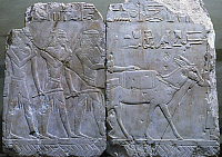 0129696 © Granger - Historical Picture ArchiveEGYPT: PUNT RELIEF.   Scene from a voyage to the land of Punt. Fragment of a limestone relief from the funerary temple of Queen Hatshepsut at Deir el-Bahri, Thebes, Egypt, 18th Dynasty.
