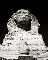 0260368 © Granger - Historical Picture ArchiveEGYPT: GREAT SPHINX.   Close-up of the Great Sphinx at Giza, mid-20th century.