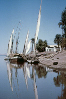 0354809 © Granger - Historical Picture ArchiveEGYPT: FELUCCAS, c1970.   Feluccas at the Nile River harbor of Edfu, Egypt. Photograph, c1970.