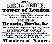 0116366 © Granger - Historical Picture ArchiveTOWER OF LONDON: MENAGERIE.   Broadside announcing the reopening to the public of the menagerie at the Tower of London, 31 August 1833. The menagerie was closed and the animals moved to Regent Park two years later. RESTRICTED OUTSIDE US.