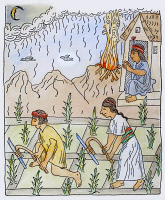 0105142 © Granger - Historical Picture ArchiveINCAN CULTIVATION.   Incas cultivating a cornfield. Pen and ink drawing from 'El primer nueva cronica y buen gobierno' ('The first new chronicle and good government'), 1583-1615, by Felipe Guaman Poma de Ayala.