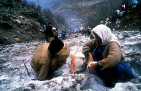 0623466 © Granger - Historical Picture ArchiveIRAQ: KURDISH REFUGEES, 1991. Women, part of a mass of Kurdish refugees in northern Iraq, melt snow for water. Photograph by Knut Müller, 31 December 1991. Full Credit: ullstein bild - Knut Müller / Granger. All Rights Reserved.