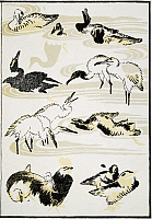 0041062 © Granger - Historical Picture ArchiveHOKUSAI: BIRDS, 1817.   Various birds: woodblock print from the 'Manga' of Katsushika Hokusai, 1817.