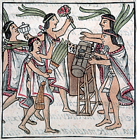 0126335 © Granger - Historical Picture ArchiveAZTEC: MUSIC AND DANCE.   Aztecs dancing and playing the drums during the One Flower Festival. Illumination from the Codex Florentino, c1540, compiled by Bernardino de Sahagun.