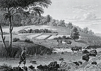 0368860 © Granger - Historical Picture ArchiveHISTORY.   Vew of the Cox River west of the Blue Mountains, New South Wales, engraving by Friedrich Schroeder (1768-1839) from Journey around the world, 1817-1820, by Louis de Freycinet (1779-1842). Australia, 19th century. Full Credit: De Agostini / G. Dagli Orti / Granger, NYC -- All rights reserv