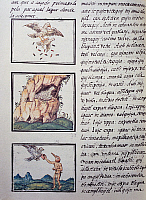 0411636 © Granger - Historical Picture ArchiveARCHAEOLOGY.    Eagles, page from the Florentine Codex, bilingual version in Spanish and Nahuatl, General History of the Things of New Spain (Historia general de las cosas de Nueva Espana), by the Spanish missionary Fray Bernardino de Sahagun (1499-1590). Aztec civilisation, 16th century. Facsimile. Full credit: De Agostini Picture Library / The Granger Coll