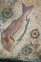 0419320 © Granger - Historical Picture ArchiveARCHAEOLOGY.    Fish, detail from a mosaic floor, ruins of the Roman city of Ossonoba, today Faro, Portugal. Roman civilisation. Full credit: De Agostini / W. Buss / Granger, NYC -- All Rights Reserved.