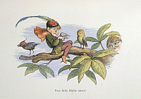 0514059 © Granger - Historical Picture ArchiveBRITISH LIBRARY.    In Fairy Land A series of pictures from the elf-world by Richard Doyle With a poem by W Allingham. Poor little birdie teased. Full credit: British Library / Granger, NYC -- All rights reserved.