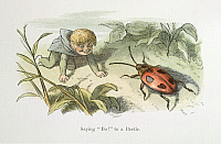 0523720 © Granger - Historical Picture ArchiveBRITISH LIBRARY.    In Fairy Land A series of pictures from the elf-world by Richard Doyle With a poem by W Allingham. Saying Bo! to a beetle. Full credit: British Library / Granger, NYC -- All rights reserved.