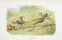 0523721 © Granger - Historical Picture ArchiveBRITISH LIBRARY.    In Fairy Land A series of pictures from the elf-world by Richard Doyle With a poem by W Allingham. Cruel elves. Full credit: British Library / Granger, NYC -- All rights reserved.