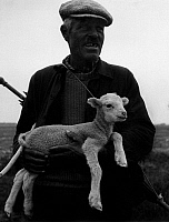 0560872 © Granger - Historical Picture ArchiveFRANCE.   Shepherd with lamb in the Provence (undated picture). Full credit: Gert Mähler / Süddeutsche Zeitung Photo / Granger, NYC -- All rights reserved.