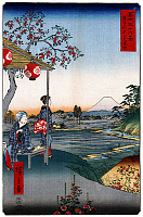 0612738 © Granger - Historical Picture Archive36 VIEWS OF MOUNT FUJI, 1858. Teahouse with View of Mt. Fuji at Zoshigaya. Image 9 of '36 Views of Mount Fuji.' Vertical series by Utagawa Hiroshige, 1858. Full Credit: Pictures from History - CPA / Granger, NYC. All Rights Reserved.