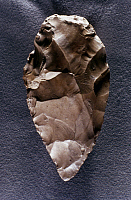 0020975 © Granger - Historical Picture ArchivePALEOLITHIC TOOLS.   Flint hand axe (20 cm x 4 cm).