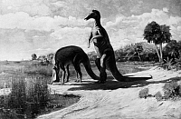 0127552 © Granger - Historical Picture ArchiveDINOSAURS: TRACHODON.   Two Trachodon at the water's edge. Painting, 1909, by Charles R. Knight, after skeletons mounted at the American Museum of Natural History, later classified as Anatotitan.