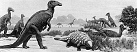 0167507 © Granger - Historical Picture ArchiveDINOSAURS: CRETACEOUS.   Dinosaurs of the Late Cretaceous period: Corythosaurus, Palaeoscincus, and Edmontosaurus (foreground, left-to-right). Mural by Charles R. Knight, 1926-1930, from the Field Museum of Natural History, Chicago, Illinois.
