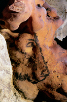 0167859 © Granger - Historical Picture ArchiveCAVE ART: HORSE.   Face of a horse, painted in black outline on a flint nodule in the Rouffignac cave, Dordogne, France, c11,000 B.C.