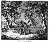 0082419 © Granger - Historical Picture ArchiveBEAR TRAPPERS.   The capture of a bear in Poland. Line engraving, Dutch, 18th century.