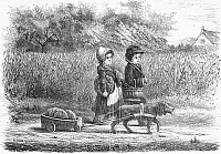 0100804 © Granger - Historical Picture ArchiveDOG CART, 19th CENTURY.   Line engraving, 19th century.
