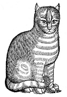 0027744 © Granger - Historical Picture ArchiveCAT.   Woodcut from Edward Topsell's 'The History of Four-Footed Beasts,' London, 1607.