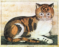 0039610 © Granger - Historical Picture ArchiveFOLK ART: CAT.  'Kitty.' Copper engraving, c1822, by George White, Vermont.