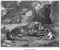 0082078 © Granger - Historical Picture ArchiveLION.   The lion over his prey. Wood engraving, English, 19th century.