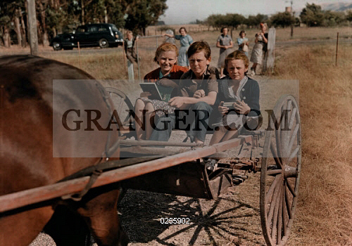 SONOMA, CALIFORNIA, USA. 