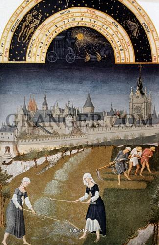Medieval and Renaissance Studies: Home