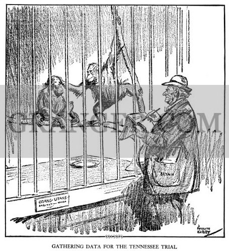 Image Of Scopes Trial Cartoon 1925 Gathering Data For The