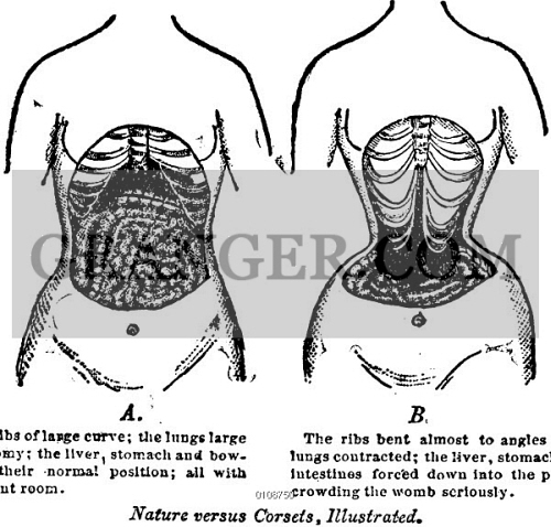 How to Use Corset – Everything You Need to Know