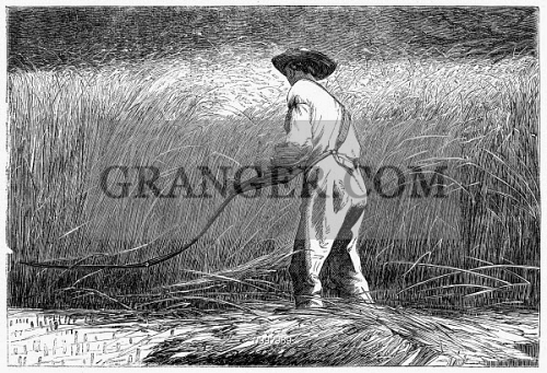 THE VETERAN IN A NEW FIELD. 