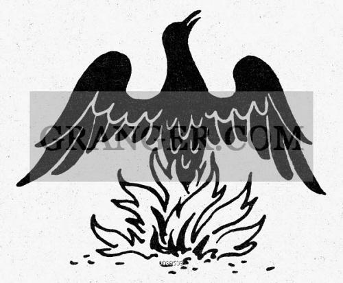 image of egyptian symbol phoenix the phoenix an