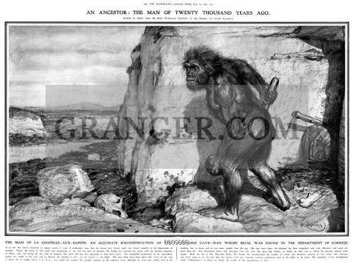 Neanderthal La Chapelle Aux Saints Image of NEANDERTHAL M...